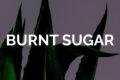 Avni Doshi - Burnt Sugar (2020) OST